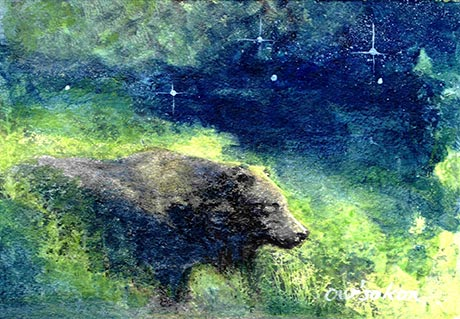 Black bear in the midst of high grasses under a starry sky.