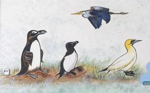 Les oiseaux de Jacques Cartier (détail)