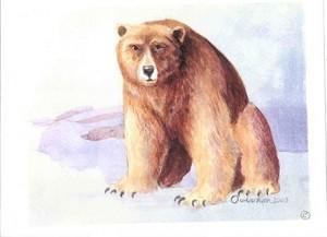 lahache-bear